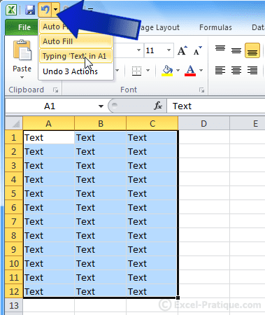undo actions - excel basics