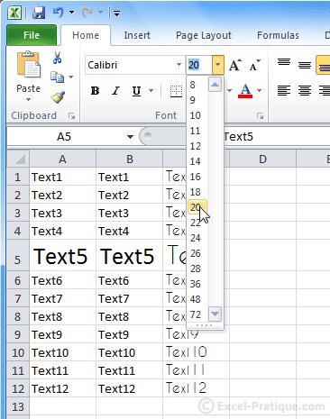 change font size excel basics2