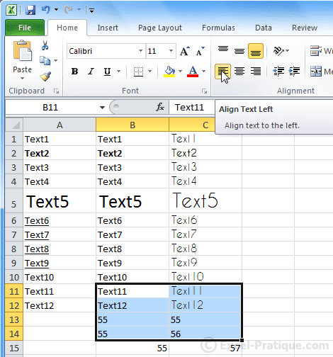 text left - excel basics3