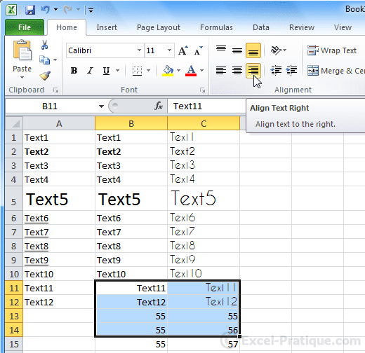 text right - excel basics3