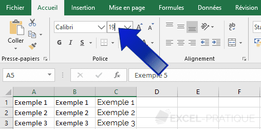 excel taille texte personnalisee manipulations 2