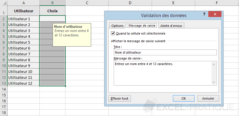 excel validation donnees message saisie