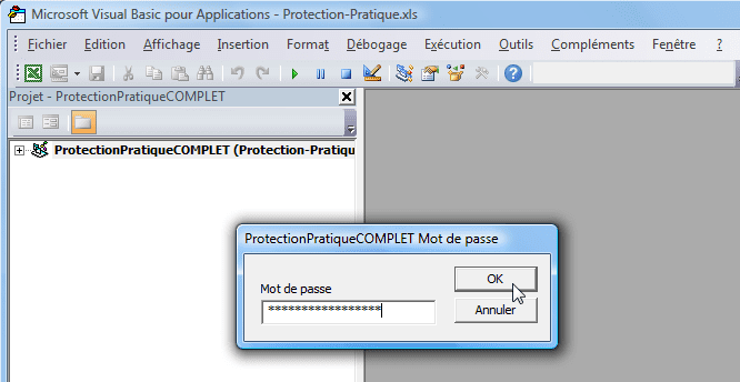 vba tutoriel protection