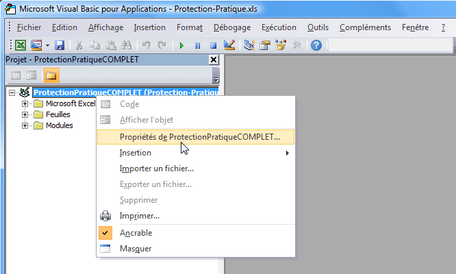 vba2 tutoriel protection